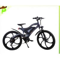China City Mountain Lithium Battery Electric Bike with Brushless Motor on sale