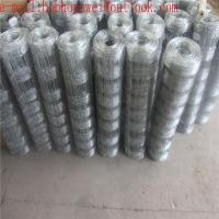 China sheep fence/yard fencing/deer fence/fence slats/ cattle fence for sale/metal fence posts/wire fence panels hot sale on sale