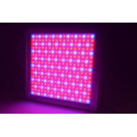 Full Spectrum Dimmable LED Grow Lights IP65 Waterproof With 58W Power Manufactures