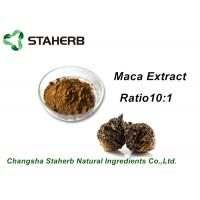Medical Herbal Extract Ratios Maca Root Extract Powder 4:1 For Male Health Care Product Manufactures