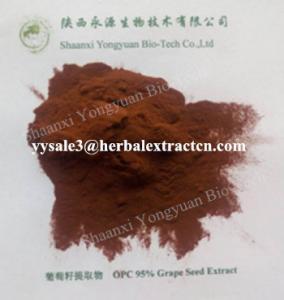 natural antioxidant Grape seed Extract, OPC 95%, WHITEN SKIN,  anti wrinkle, anti radiation, Shaanxi Yongyuan Bio-Tech Manufactures