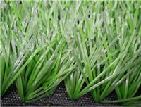 China Sports Grass Football-WF-DDJ12000 wholesale