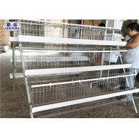 Three Tiers Layer Chicken Cage / 5 Cells Poultry Egg Layer Cages 120 Birds Manufactures