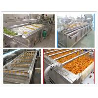 Professional Microwave Tunnel Drying Machine For Fruits and vegetables
