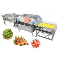Automatic Salad Fruit Air Bubble Cleaning Production Line Customized Manufactures