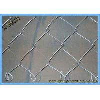 China Stainless Steel PVC/Galvanized Wire Mesh Chain Link Fence Metal Security Fence for Farm/Garden on sale