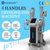 China 2017 hot selling product stationary cryotherapy cool tech fat freezing body shaper slimming machine on sale