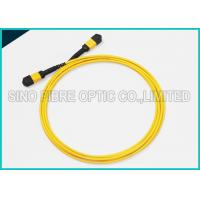 40Gbps 3.0mm 12 Array MPO to MPO Singlemode SMF-28e Fibre Optical Riser Rated Patch Cable Manufactures