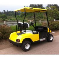 China 2 seaters gas powered golf cart,cheap golf cart for sale on sale