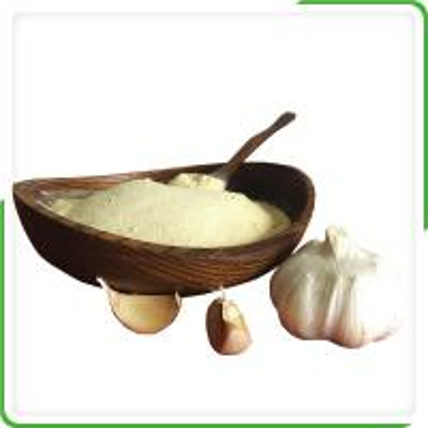 High quality bulk organic dehydrated garlic powder best price with the European standard