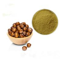 Natural Herbal Plant Extract Hazelnut Extract Powder / Corylus Chinensis Extract Manufactures