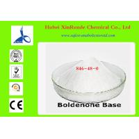 Boldenone Base Cutting Cycle Steroids Body Building Testosterone Based Steroids Manufactures