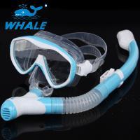 Fashion Light Blue Diving Snorkel Set , Commercial Waterproof Dry Snorkel And Mask Set Manufactures