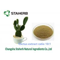 Cactus Extract Weight Loss Powder Ratio 10/1 Solvent Extraction For Cosmetic Field Manufactures