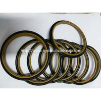 HBTS/SS/SSW  Rod Buffer Seal / Custom Size PTFE NBR Material Manufactures