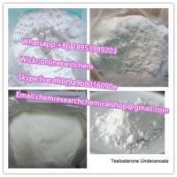 High quality Testosterone Undecanoate Powder Raw Steroid Powders Testosterone Undecanoate Bodybuilding Supplements Manufactures