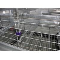 China Commercial Chicken Poultry Cage Egg Layer Poultry Battery Cage 8 Tiers on sale
