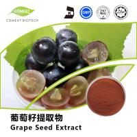 Hot Sale Grape Seed Extract 95% OPC Red Brown Powder UV Testing Manufactures