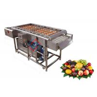 Stainless Steel Automatic Fruit Brush Washing Machine / Peach Red Dates Cleaning Equipment Manufactures