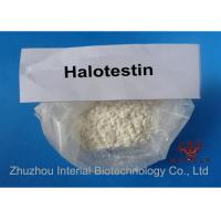 Pharmaceutical Strongest Testosterone Steroid Fluoxymesteron Halotestin 99.7% Purity Manufactures