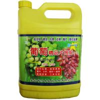 China House environmental organic Water soluble fertilizer for grape on sale