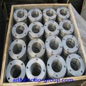 ASTM16.5 Gr1Titanium Welding Neck Flange DN10 - DN600 Class150 / 300 / 600 / 9001500 Manufactures