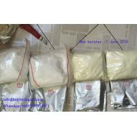 CAS 10418-03-8 Anabolic Steroid Powder Stanozolol Winstrol For Cutting Cycles Manufactures