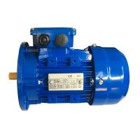 Ms 56 Frame 3 Phase Induction Motor With Flexible Foot