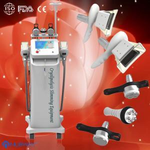 2014 cheapest lipo laser cryolipolysis,slimming cryolipolysis machine manufacturer Manufactures