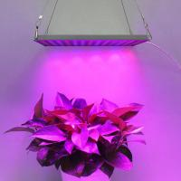 Indoor Garden LED Panel Grow Light With Meanwell Driver , 10mm Thickness Manufactures