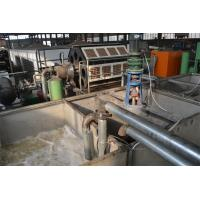 Paper Apple Tray / Egg Tray Manufacturing Unit With Low Energy Consumption Manufactures