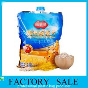 Big 1 KG  Oats Packaging Liquid Spout Bags Food Grade Plastic Bag With Lid Manufactures