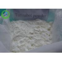 China Healthy Cutting Stack Steroids , Oral Turinabol For Fat Burning 2446-23-3 on sale