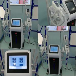 China Add to CompareShare High Quality Cryolipolysis Lipo Cavitation RF Beauty Cryolipolysis Cheap Freezing Fat Cell Slimmin on sale