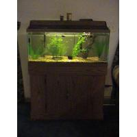 China Newly design acrylic fish tank for sale on sale