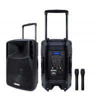 Portable 12 Inch Professional Audio Speakers 38mm 2 way Loudspeaker Painted box Manufactures