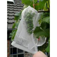 100% HDPE UV Radiation Agents 3% Fruit Tree Covers , Bags To Cover Fruit On Trees Manufactures