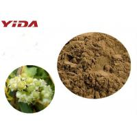 YIDA GMP Certification Dodder Seed Extract Powder Remedy Sexual Problems Manufactures