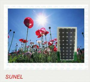 China Mono Crystalline Solar Module (200W) on sale
