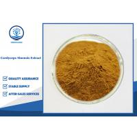 CAS 73-03-0 Cordyceps Sinensis Extract 10%-98% Cordycepin For Food Supplement Manufactures