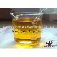 Pharmaceutical Nandrolone Decanoate Steroid Nandrolone Cypionate CAS 601-63-8 Manufactures