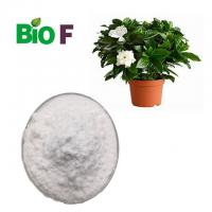China Food Grade Natural Pigment Powder Gardenoside Ingredients Dispelling Heat on sale