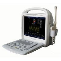 Quality 15inch Full-digital Color Doppler Ultrasound System Portable With 3D / 4D Software for sale