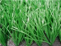 Quality Sports Grass Football-WF-DDJ18800 for sale