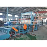 Low Consumption Egg Carton Machine / Pulp Egg Tray Molding Machine Manufactures