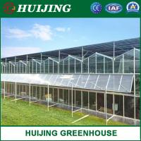 China High Quality Venlo Multi-Span Glass Greenhouse Hydroponic System Vegetable/Strawberry/Cucumber Automatic Climate Control on sale