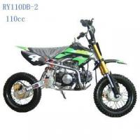 China CE 110cc Dirt Bike RY110DB-2 on sale