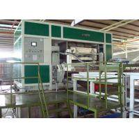 Automatic Pulp Moulding Egg Tray Machine with 6 Layer Drying Lines 3000pcs Per Hour Manufactures