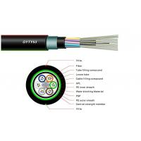 12 Core Single Mode Fiber Optic Cable , Armoured Outdoor Cable GYFTY53 OEM Manufactures