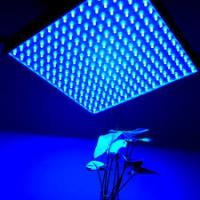 Quality IP44 LED Panel Grow Light For Medical Plants / Greenhouse , High Brightness for sale